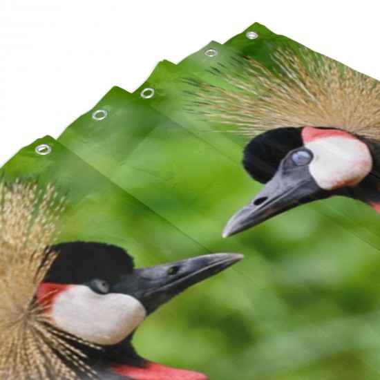 Birds The Grey Crowned Crane Shower Curtain , Shower Bathroom Curtain 55x72 Inch Waterproof Fabric with Hooks , Wildly used in bathroom and hotel etc.