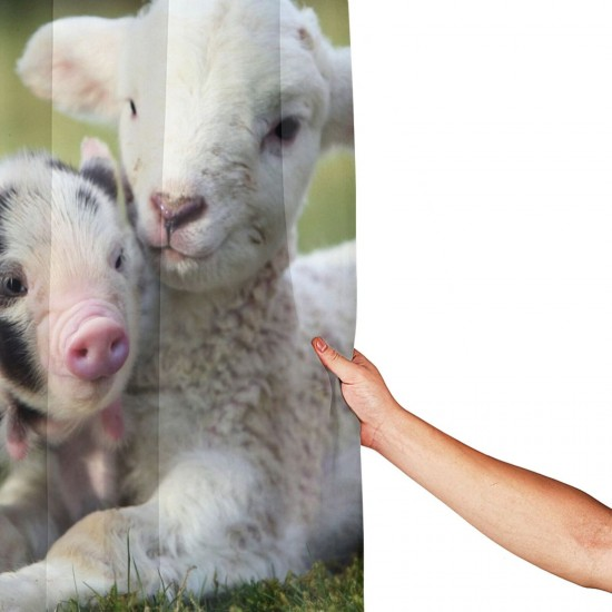 Lamb And Pig Shower Curtain , Shower Bathroom Curtain 55x72 Inch Waterproof Fabric with Hooks , Wildly used in bathroom and hotel etc.