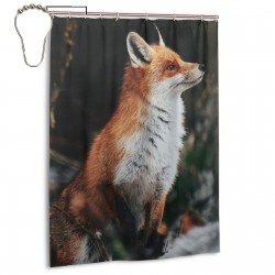 Beautiful Red Fox Portrait Shower Curtain , Shower Bathroom Curtain 55x72 Inch Waterproof Fabric with Hooks , Wildly used in bathroom and hotel etc.