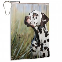 Beautiful Dalmatian Dog In The Grass Shower Curtain , Shower Bathroom Curtain 55x72 Inch Waterproof Fabric with Hooks , Wildly used in bathroom and hotel etc.
