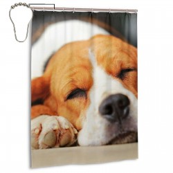 Beagle Dog Sleeping And Take Some Rest Shower Curtain , Shower Bathroom Curtain 55x72 Inch Waterproof Fabric with Hooks , Wildly used in bathroom and hotel etc.