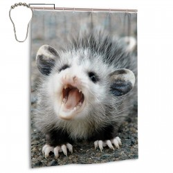 Baby Possum Shower Curtain , Shower Bathroom Curtain 55x72 Inch Waterproof Fabric with Hooks , Wildly used in bathroom and hotel etc.