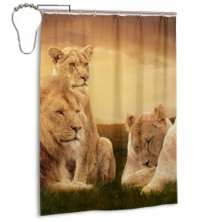 Animal African Lion Shower Curtain , Shower Bathroom Curtain 55x72 Inch Waterproof Fabric with Hooks , Wildly used in bathroom and hotel etc.