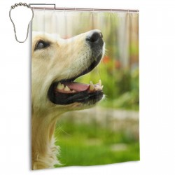 Adorable Golden Retriever Shower Curtain , Shower Bathroom Curtain 55x72 Inch Waterproof Fabric with Hooks , Wildly used in bathroom and hotel etc.