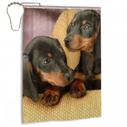 Achshund Puppy Dog Shower Curtain , Shower Bathroom Curtain 55x72 Inch Waterproof Fabric with Hooks , Wildly used in bathroom and hotel etc.