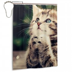Cute Cat Is Praying Unique Shower Curtain , Shower Bathroom Curtain 55x72 Inch Waterproof Fabric with Hooks , Wildly used in bathroom and hotel etc.