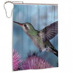 Hummingbird Pink Dandelion Flowers Shower Curtain , Shower Bathroom Curtain 55x72 Inch Waterproof Fabric with Hooks , Wildly used in bathroom and hotel etc.
