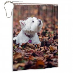 Dogs And Fallen Leaves Shower Curtain , Shower Bathroom Curtain 55x72 Inch Waterproof Fabric with Hooks , Wildly used in bathroom and hotel etc.