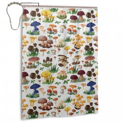 Types Of Mushrooms Wild Species Shower Curtain , Shower Bathroom Curtain 55x72 Inch Waterproof Fabric with Hooks , Wildly used in bathroom and hotel etc.