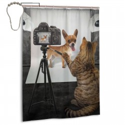 Cat Took A Photo Of The Dog Shower Curtain , Shower Bathroom Curtain 55x72 Inch Waterproof Fabric with Hooks , Wildly used in bathroom and hotel etc.