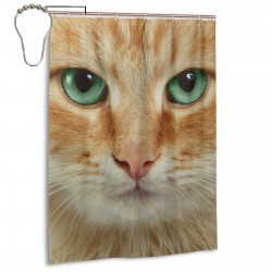 Cat Kitten Eye Print Shower Curtain , Shower Bathroom Curtain 55x72 Inch Waterproof Fabric with Hooks , Wildly used in bathroom and hotel etc.