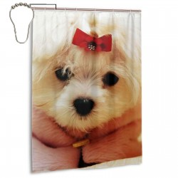Maltese Puppy Red Bow Shower Curtain , Shower Bathroom Curtain 55x72 Inch Waterproof Fabric with Hooks , Wildly used in bathroom and hotel etc.