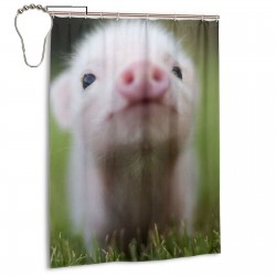 Little Baby Pig Shower Curtain , Shower Bathroom Curtain 55x72 Inch Waterproof Fabric with Hooks , Wildly used in bathroom and hotel etc.