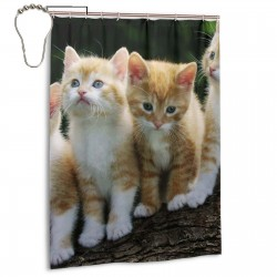Kitten Flower Group Cat Animal Shower Curtain , Shower Bathroom Curtain 55x72 Inch Waterproof Fabric with Hooks , Wildly used in bathroom and hotel etc.