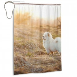 Cute Chow Chow In The Field Shower Curtain , Shower Bathroom Curtain 55x72 Inch Waterproof Fabric with Hooks , Wildly used in bathroom and hotel etc.