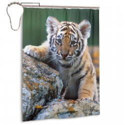 Cute Baby Tiger Shower Curtain , Shower Bathroom Curtain 55x72 Inch Waterproof Fabric with Hooks , Wildly used in bathroom and hotel etc.