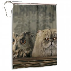Cute Baby Owl And Cat Shower Curtain , Shower Bathroom Curtain 55x72 Inch Waterproof Fabric with Hooks , Wildly used in bathroom and hotel etc.