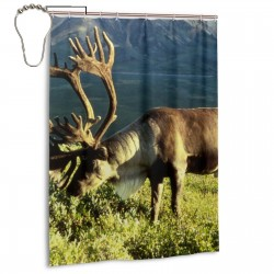 Caribou Shower Curtain , Shower Bathroom Curtain 55x72 Inch Waterproof Fabric with Hooks , Wildly used in bathroom and hotel etc.