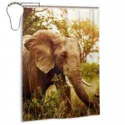 Africas Elephant Animals Wild Shower Curtain , Shower Bathroom Curtain 55x72 Inch Waterproof Fabric with Hooks , Wildly used in bathroom and hotel etc.