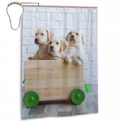 Cute Retriever Puppies Cart. Shower Curtain , Shower Bathroom Curtain 55x72 Inch Waterproof Fabric with Hooks , Wildly used in bathroom and hotel etc.